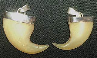 Lion claw pendant jewelry