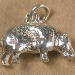 Ch 8389 Hippo